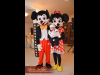 mascote-minnie-mickey-1